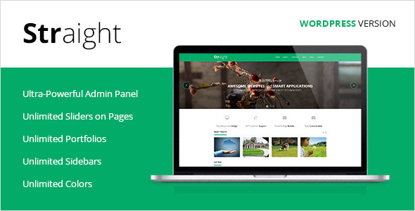 50+ New and Professional Premium WordPress Themes Of 2013